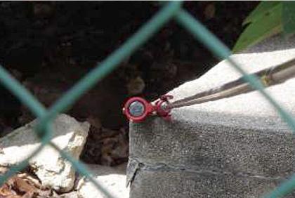 フェンス越しの観測